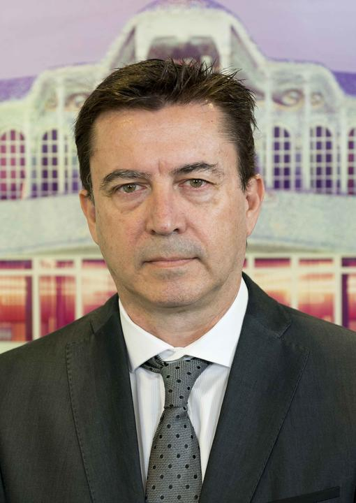 Juan José Molina Gallardo