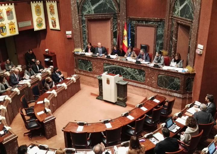 Sesión plenaria (8 febrero de 2018)