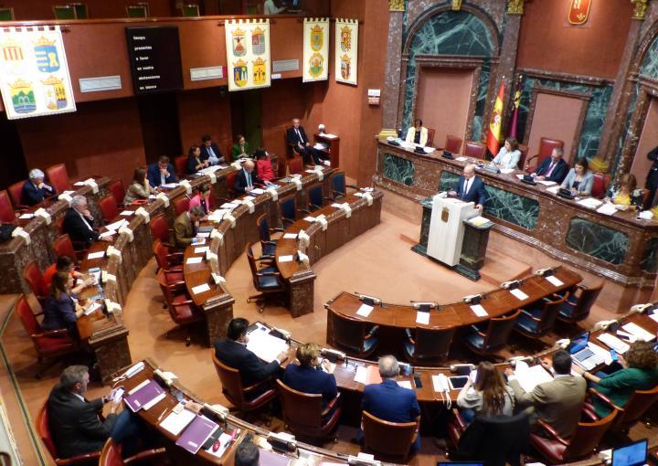 La sesión plenaria número cien se ha cerrado con tres acuerdos por unanimidad